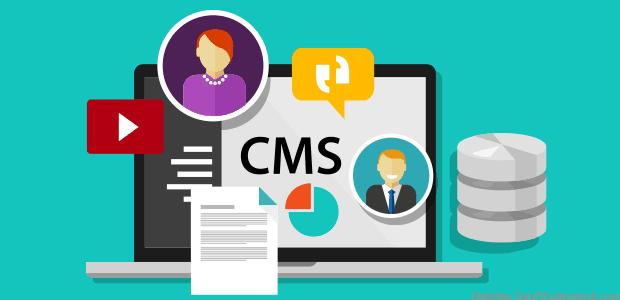Web Application Framework vs. Content Management System (CMS)