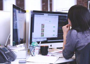 What do Software Developers do? Job Description: Salary, Skills, & More